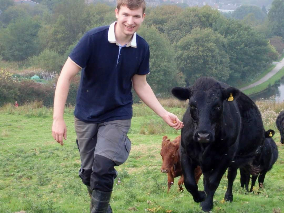 Aaron leads the herd September 2014